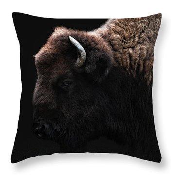 The Bison Throw Pillow by Joachim G Pinkawa
