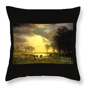 The Buffalo Trail Throw Pillow by MotionAge Designs
