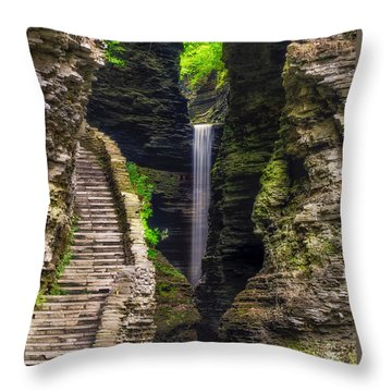 The Central Cascade Throw Pillow by Mark Papke