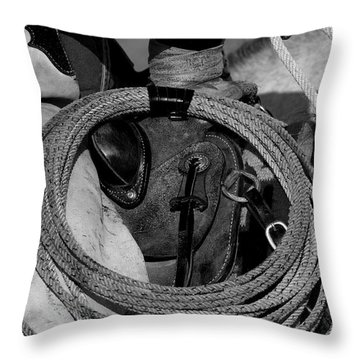 The Day Begins Throw Pillow by Sandra Bronstein