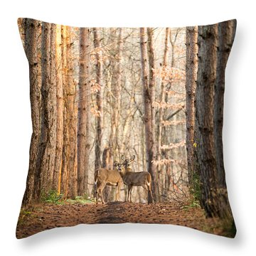 The Gift Throw Pillow by Everet Regal