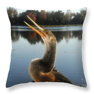 The Great Golden Crested Anhinga Throw Pillow by David Lee Thompson