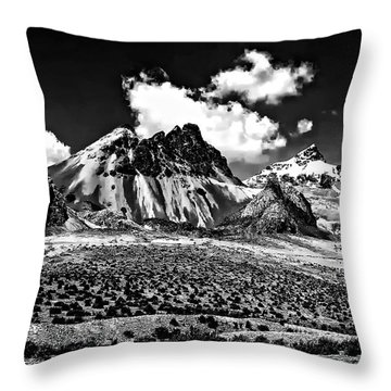 The High Andes Monochrome Throw Pillow by Steve Harrington