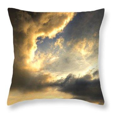The King Of His Domain Throw Pillow by Meirion Matthias