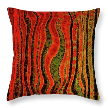 The Narrow Way Throw Pillow by Bonnie Bruno