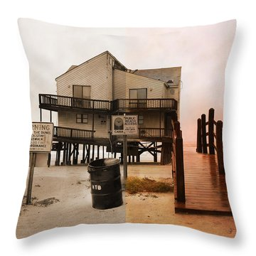 The Osprey And The Pelican Throw Pillow by Betsy Knapp