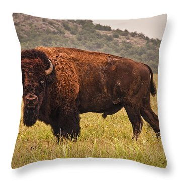 The  Outcast Throw Pillow by Tamyra Ayles