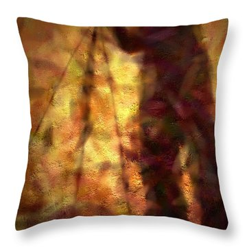 The Photographer In Water Throw Pillow by Joyce Dickens