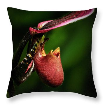 The Pitcher Throw Pillow by Elisabeth Van Eyken