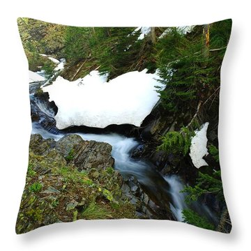 The Promise Of Things Throw Pillow by Jeff Swan