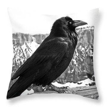 The Raven - Black And White Throw Pillow by Rona Black