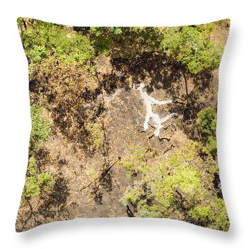 The Slash And Burn Is Spreading Throw Pillow by Michael Fay