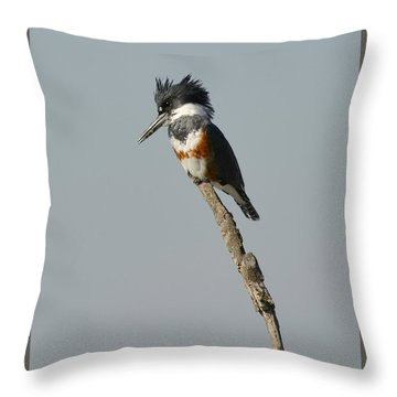 The Stand Throw Pillow by Fraida Gutovich