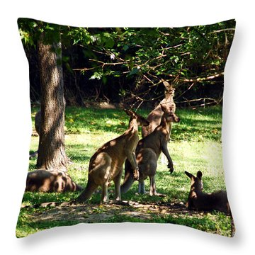 The Three Musketeers Throw Pillow by Patricia Griffin Brett