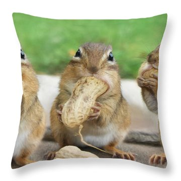 The Three Stooges Throw Pillow by Lori Deiter