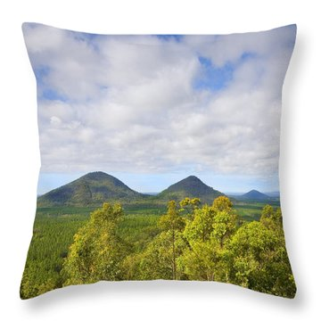 The Twins Throw Pillow by Mike  Dawson