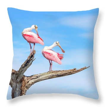 The View From Above Throw Pillow by Mark Andrew Thomas