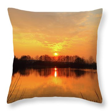 The Waal Throw Pillow by Stephen Smith