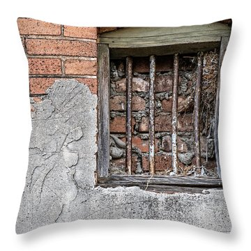 The Wall Within Throw Pillow by Charles Dobbs