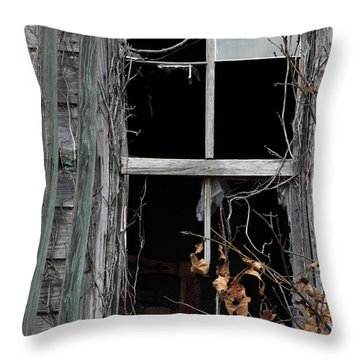 The Window Throw Pillow by Amanda Barcon