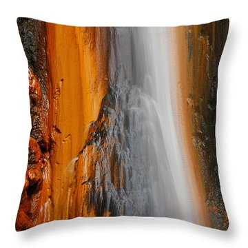 Thermal Waterfall Throw Pillow by Gaspar Avila
