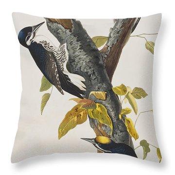 Three Toed Woodpecker Throw Pillow by John James Audubon