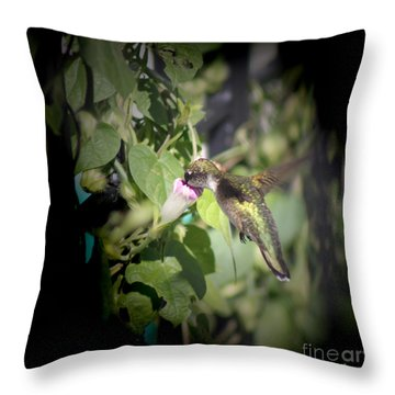 Through Garden Gates  Throw Pillow by Cathy  Beharriell