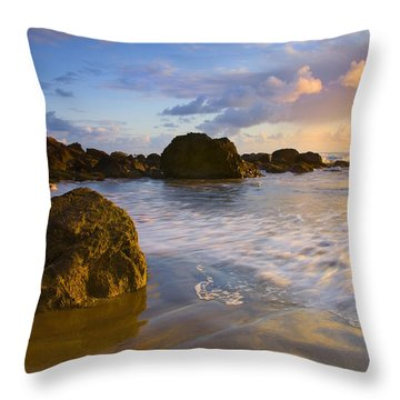 Tidal Flow Throw Pillow by Mike  Dawson