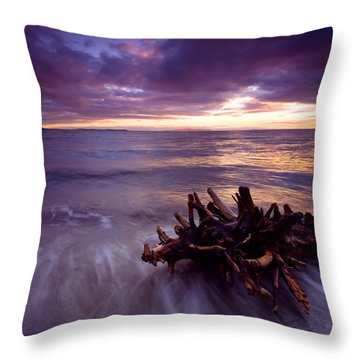 Tide Driven Throw Pillow by Mike  Dawson