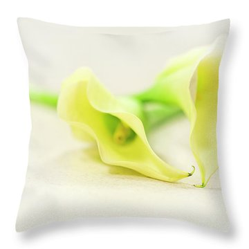 To Have And To Hold... Throw Pillow by Evelina Kremsdorf