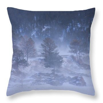 Top Of Boulder Canyon Winter Snow Throw Pillow by James BO  Insogna