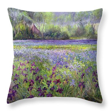 Trackway Past The Iris Field Throw Pillow by Timothy Easton