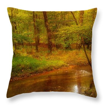 Tranquility Stream - Allaire State Park Throw Pillow by Angie Tirado