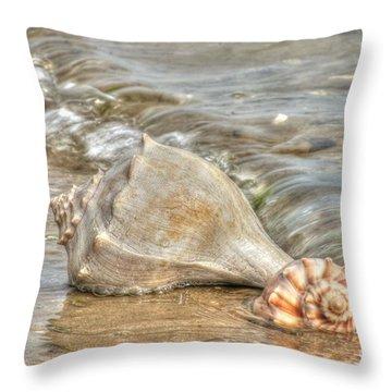 Treasures Found Throw Pillow by Benanne Stiens