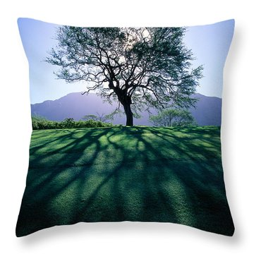 Tree On Grassy Knoll Throw Pillow by Carl Shaneff - Printscapes