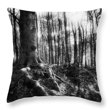 Trees At The Entrance To The Valley Of No Return Throw Pillow by Simon Marsden