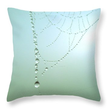 Trinkets By Nature Throw Pillow by Susan Baker
