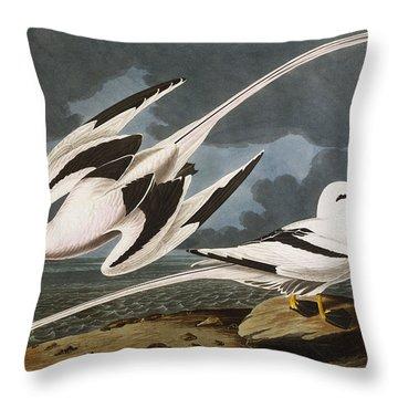 Tropic Bird Throw Pillow by John James Audubon