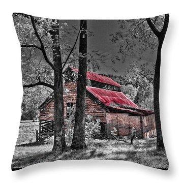Tucked In Throw Pillow by Debra and Dave Vanderlaan