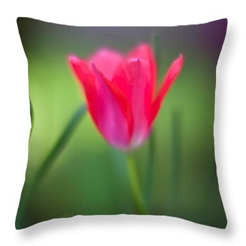 Tulip Amongst Throw Pillow by Mike Reid