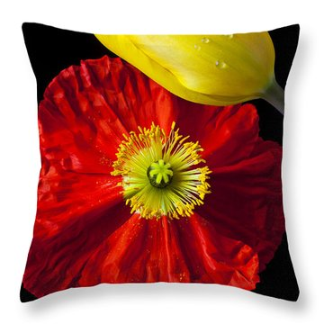 Tulip And Iceland Poppy Throw Pillow by Garry Gay
