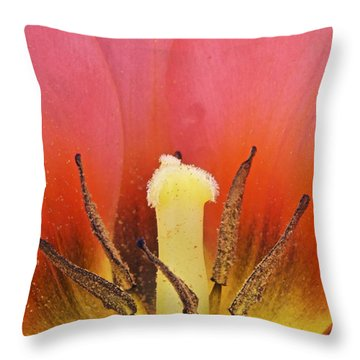 Tulip Center Throw Pillow by Michael Peychich