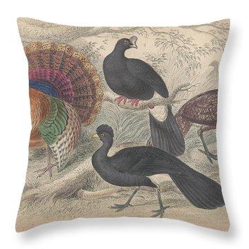 Turkeys Throw Pillow by Oliver Goldsmith