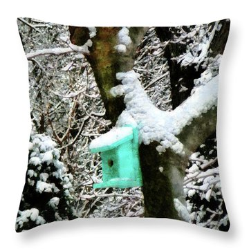 Turquoise Birdhouse In Winter Throw Pillow by Susan Savad