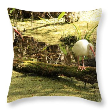 Two Ibises On A Log Throw Pillow by Carol Groenen