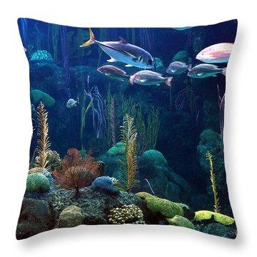 Under The Sea 3 Throw Pillow by Randy Matthews