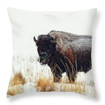 Under The Snow Throw Pillow by Joan Escala