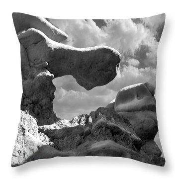 Utah Outback 22 Throw Pillow by Mike McGlothlen