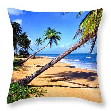 Vacia Talega Shoreline Throw Pillow by Thomas R Fletcher