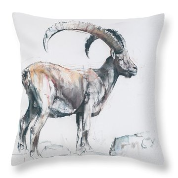 Venerando Stambecco Throw Pillow by Mark Adlington